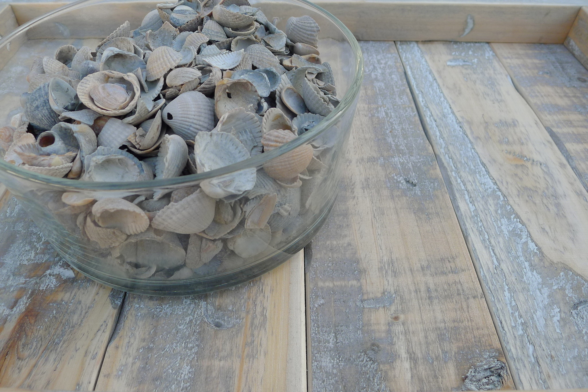 home dec shells dutch mix 15 kg-3
