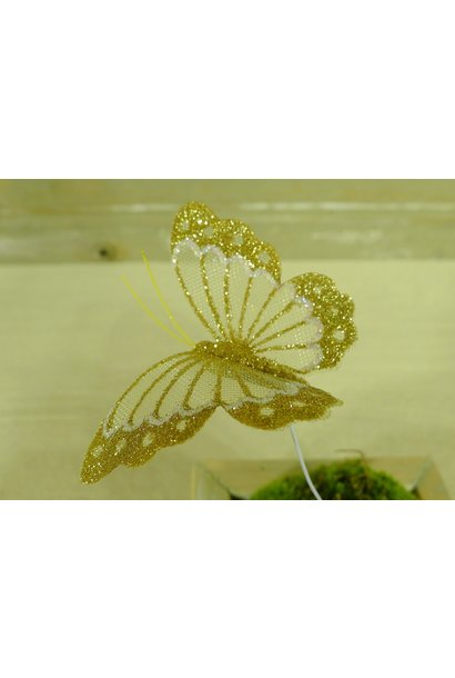 vlinder goud