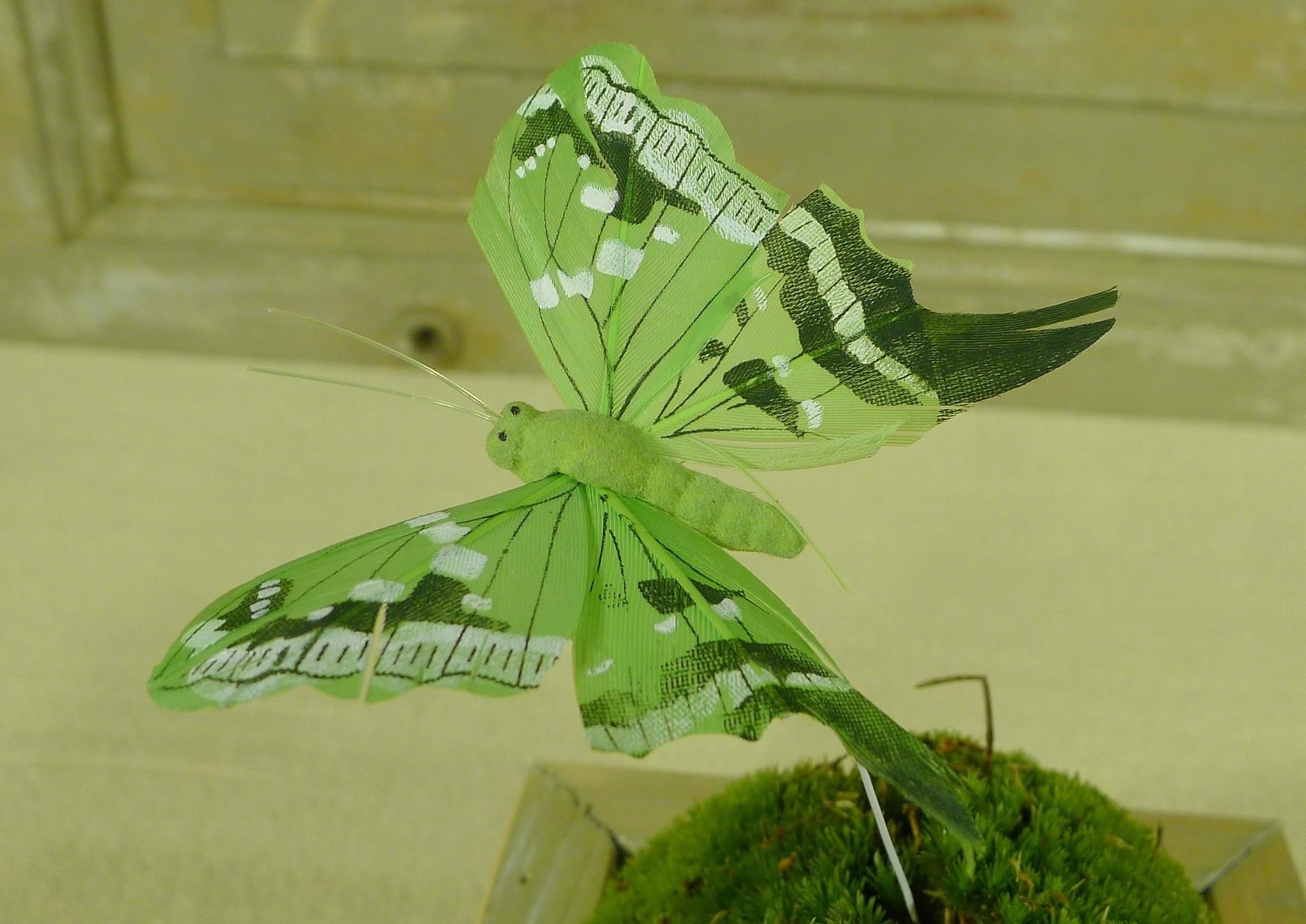 flor dec fabric butterfly 7.5 green-2