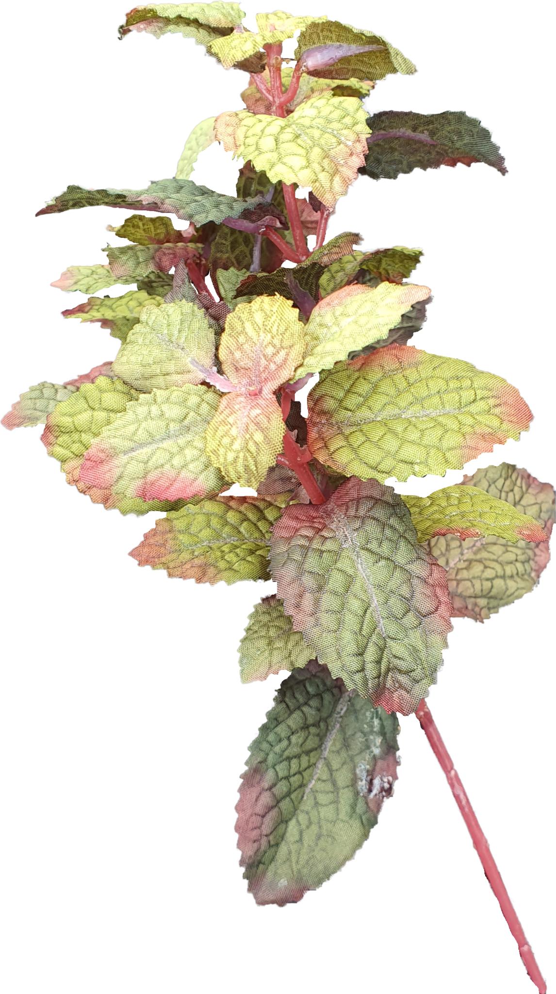 Mint pick burgundy 28cm-1