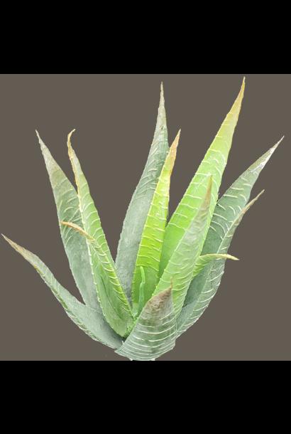 silk plant single