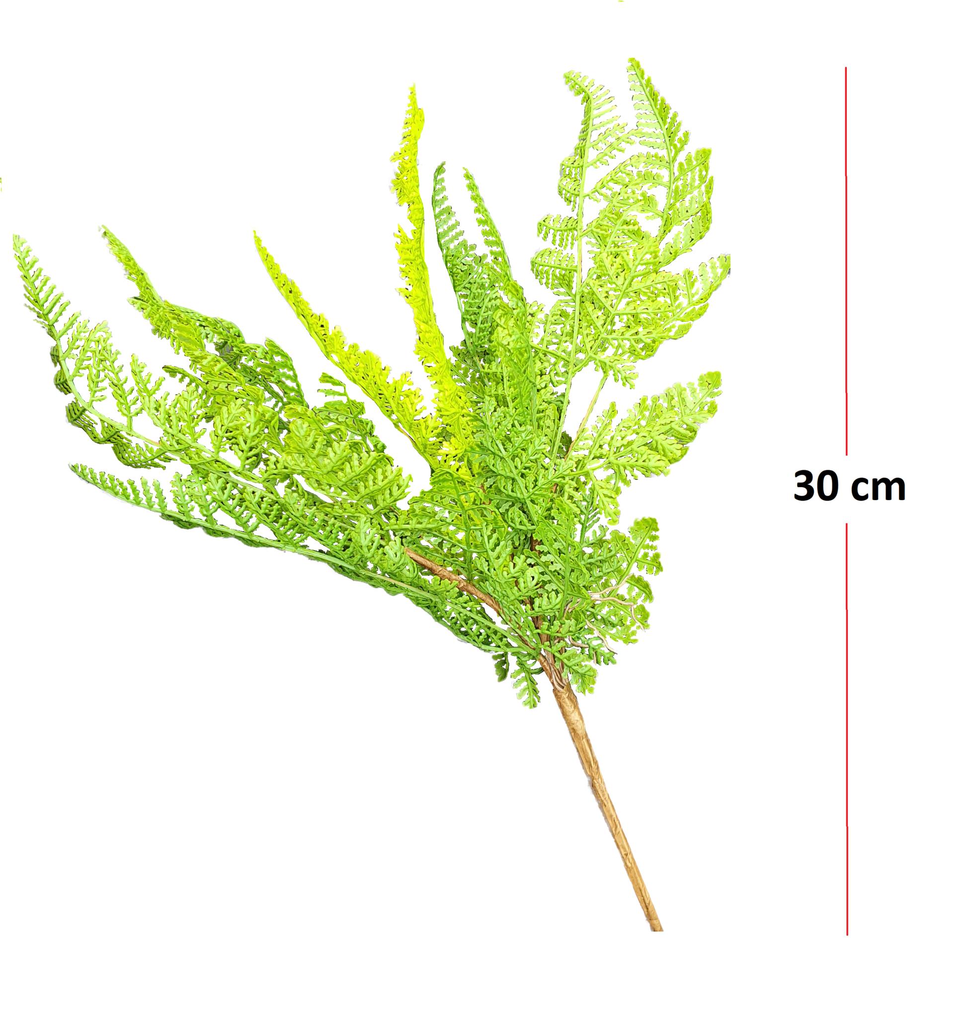 Fern forest bush 30cm-2