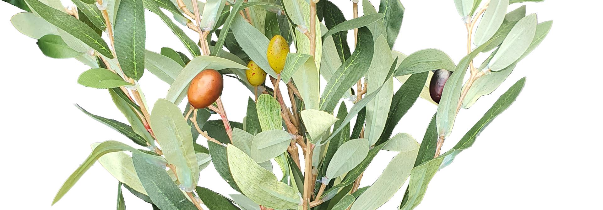 Olive bush 35cm green