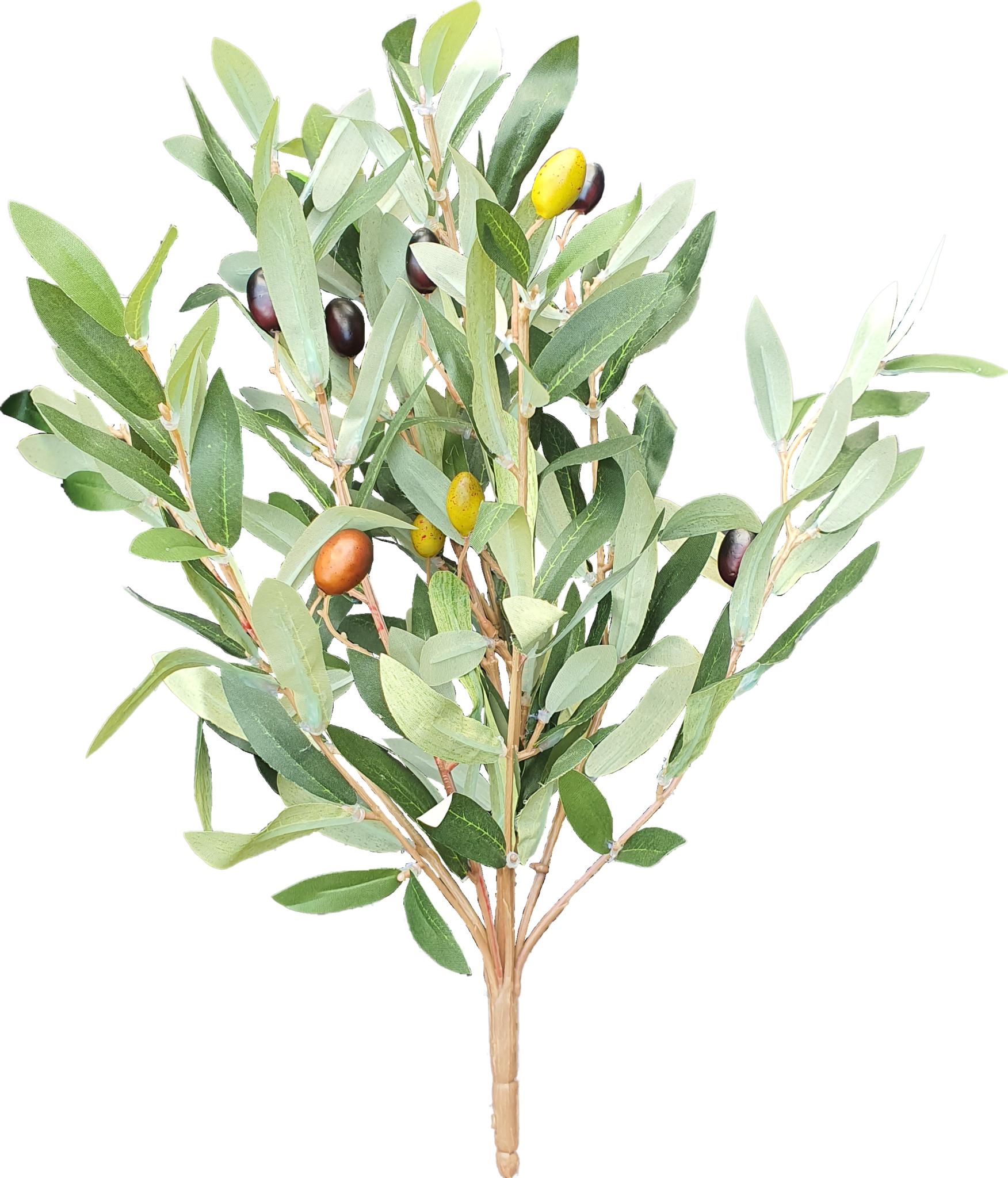 Olive bush 35cm green-1