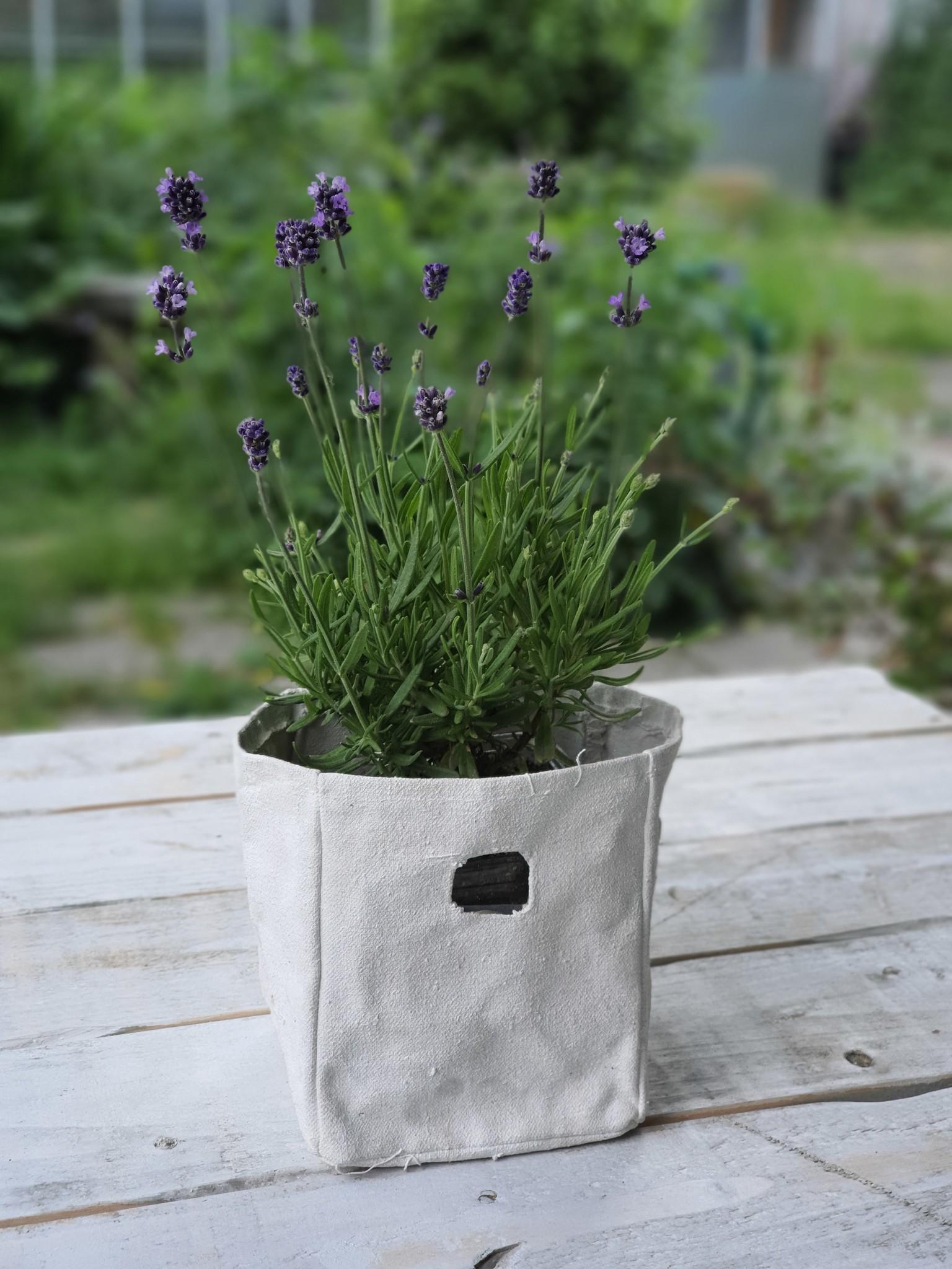 potglasscream bag + glass 13-5