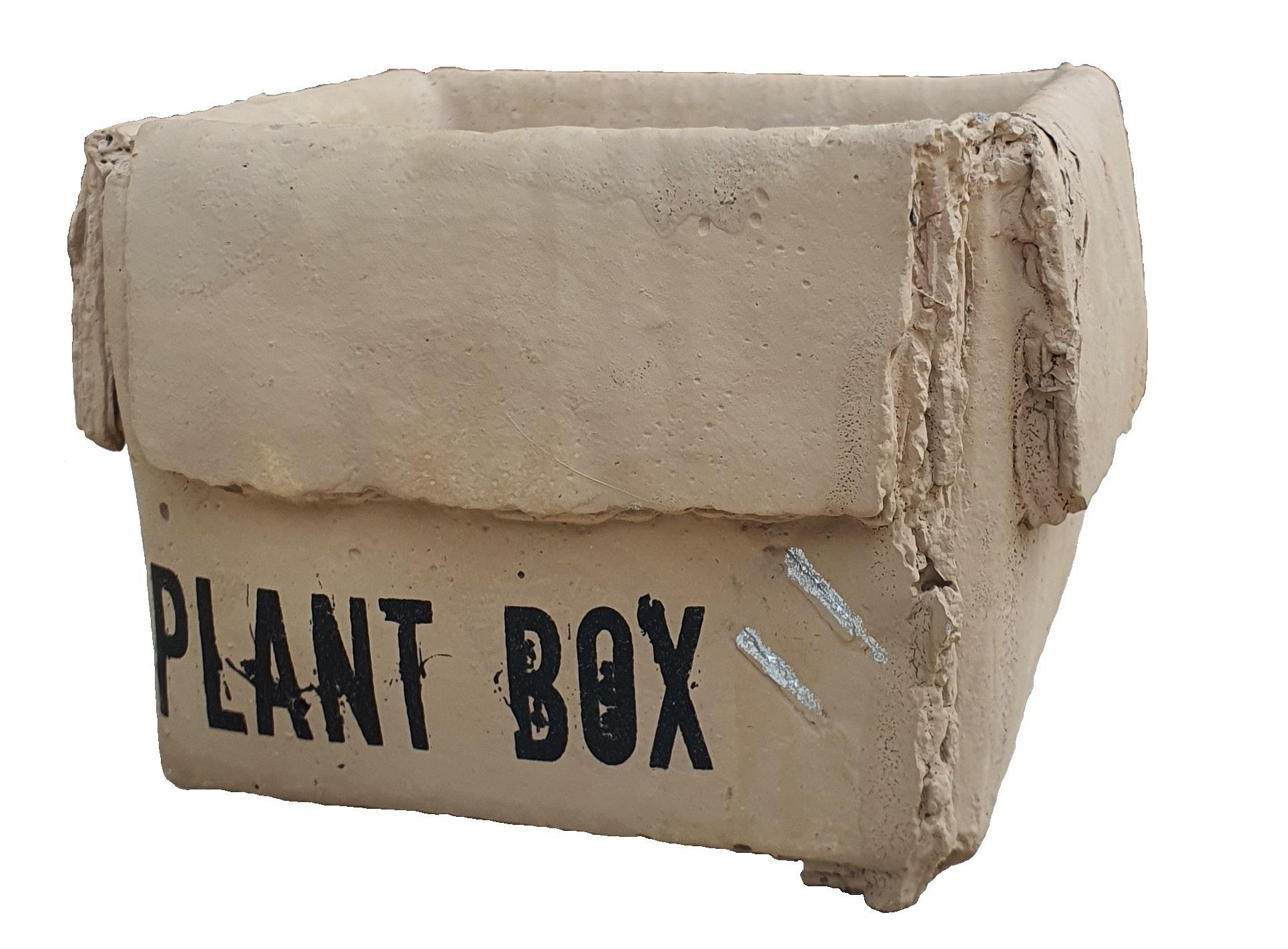 pot ceramic plant box 11-1