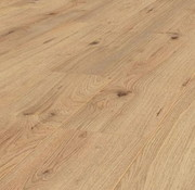 JANGAL JANGAL 8145 - BRIGHT OAK