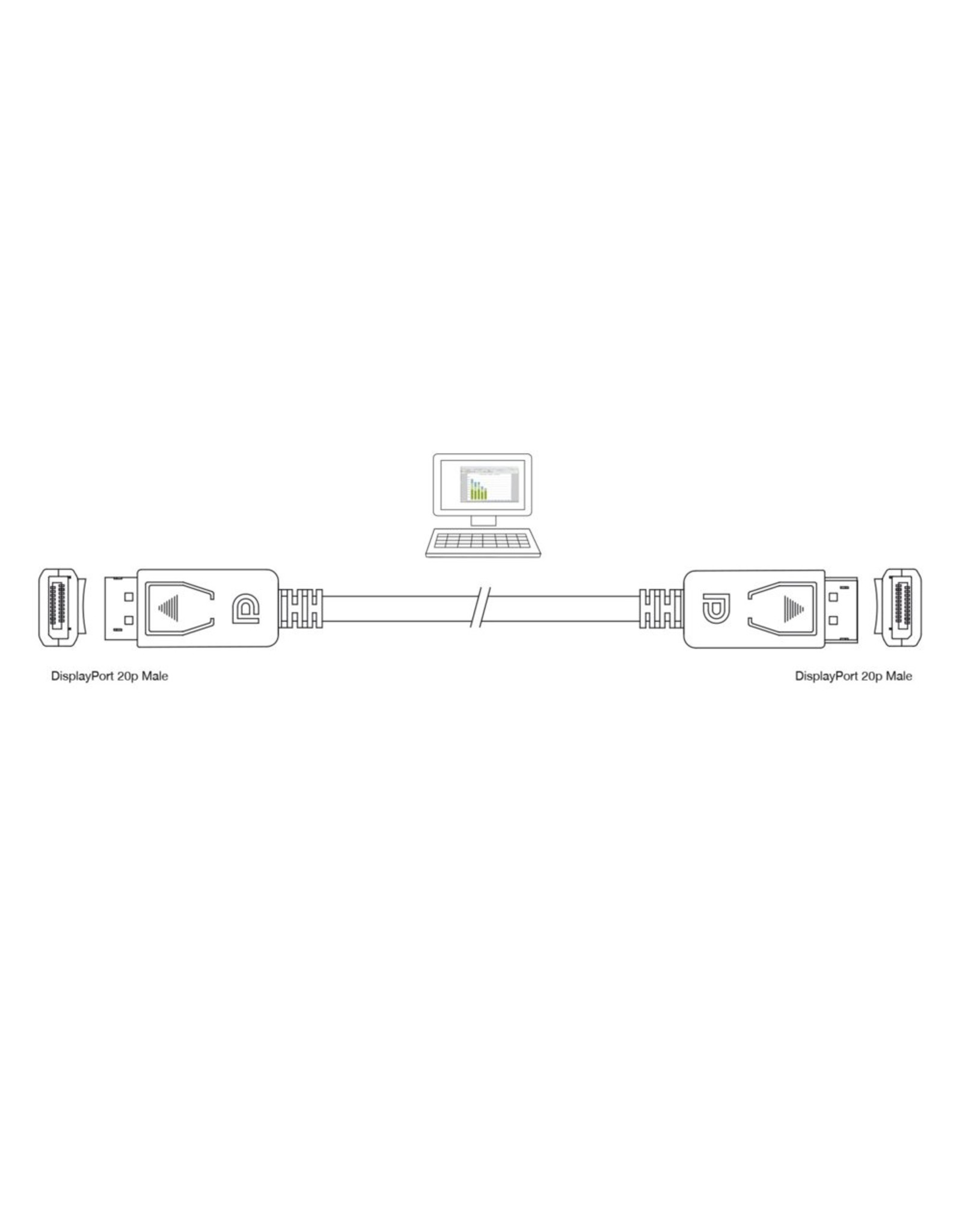 Ewent DisplayPort cable 3.0 Meter