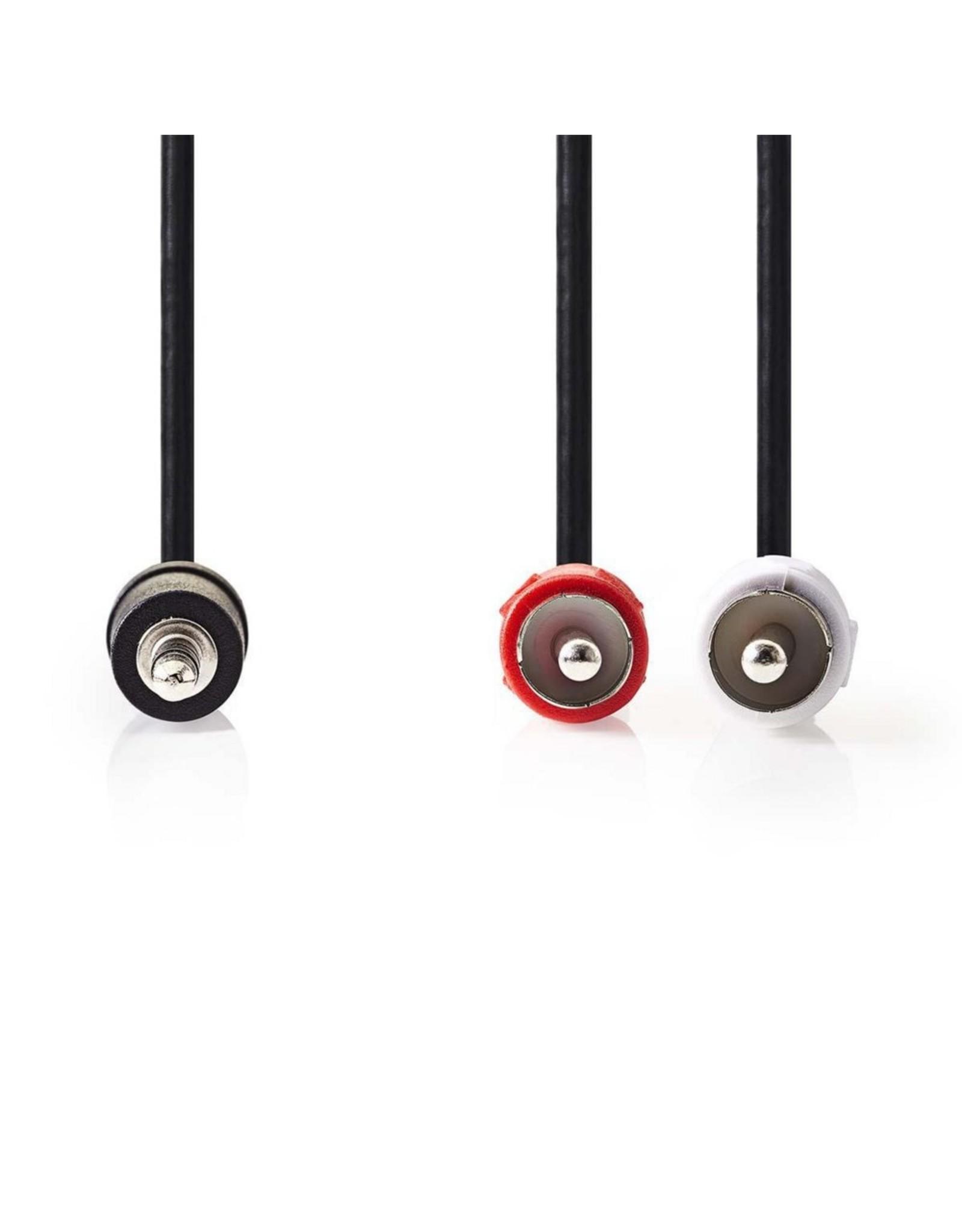 OEM Kabel Audio 2x RCA - Jack 3.5 Stereo 3 meter