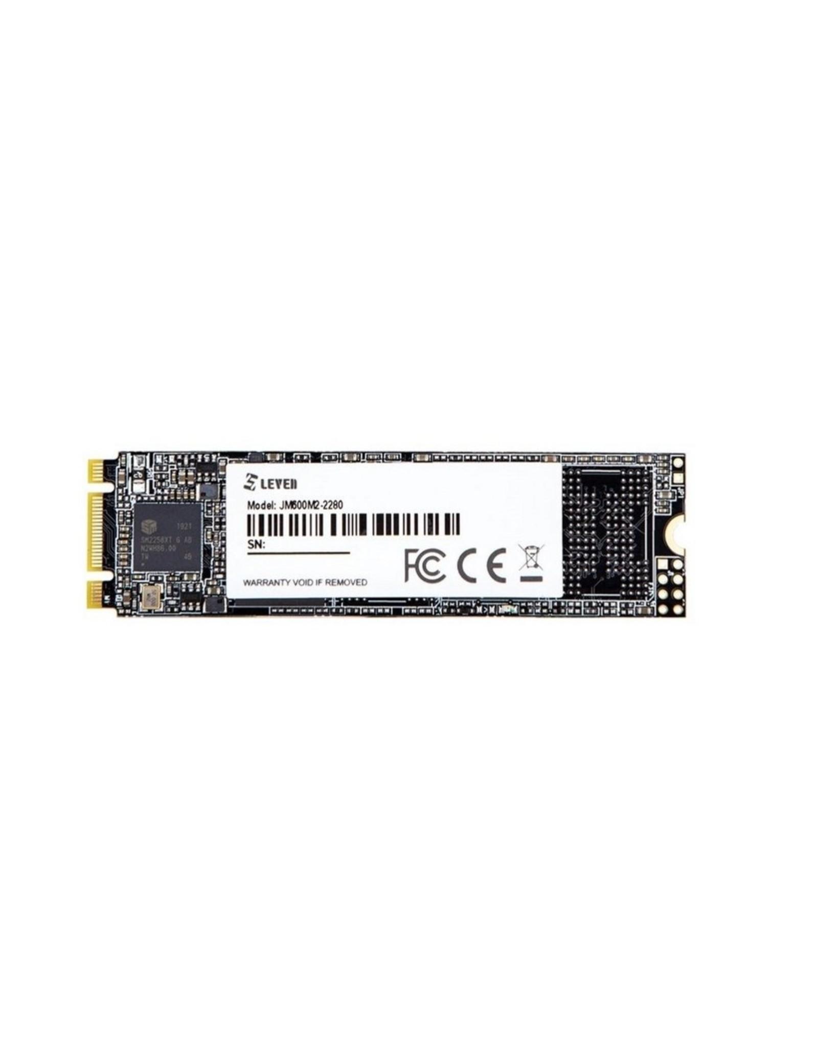 OEM SSD Leven 256GB M.2 JM600 retail