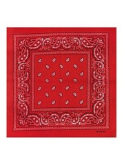 Goudhaartje Bandana patroon rood wit