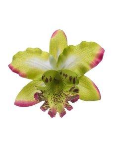 Goudhaartje Orchidee haarbloem groen op alligator knipje