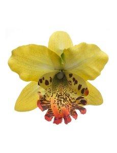 Goudhaartje Orchidee haarbloem geel op alligator knipje