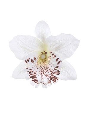 Orchidee haarbloem op alligator knipje wit