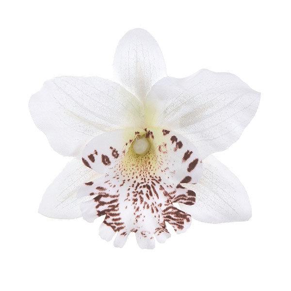 Goudhaartje Orchidee haarbloem op alligator knipje wit