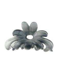 Goudhaartje Haarklem blauw grijs bloem