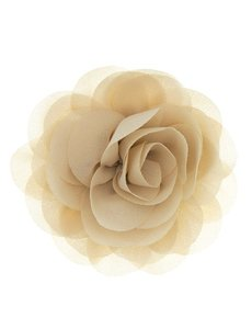Goudhaartje Haarbloem roos zand kleur op alligator knipje