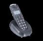 Freetel Eco losse handset Zwart