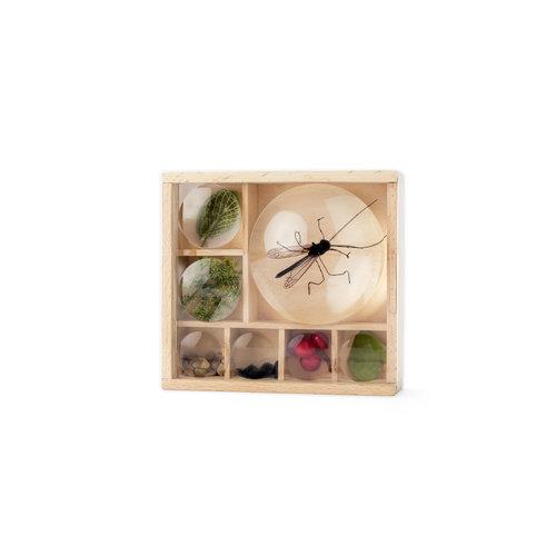 Huckleberry Huckleberry - Insectendoos