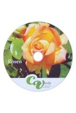 #3111 Rosen - Grundlagenwissen für den Einkauf, die Pflanzung und die Pflege von Rosen
