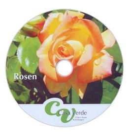 #3111 Rosen