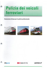 #3061 Pulizia dei veicoli ferroviari  - Conoscenze di base per la pulizia professionale