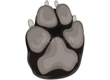 poot- en nagelverzorging