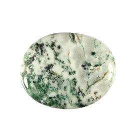 Agaat (boom) platte steen