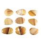 Aragoniet (bruin/geel) platte steen