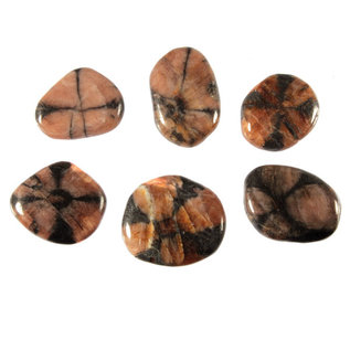 Chiastoliet of kruissteen platte steen