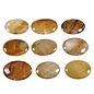 Golden healer platte steen