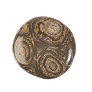 Stromatoliet platte steen