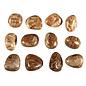 Aragoniet (bruin) trommelstenen M (50 gram)