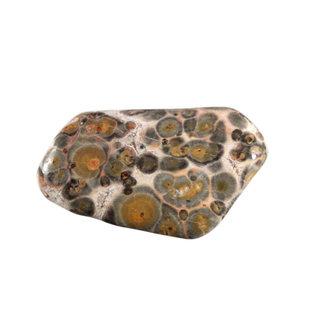 Jaspis (luipaard) trommelstenen L (50 gram)