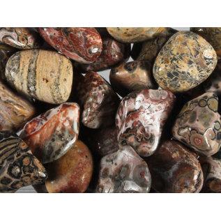Jaspis (luipaard) trommelstenen M (50 gram)