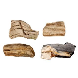 Versteend hout ruw maat 6 (per stuk)