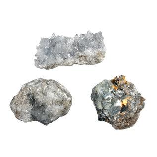 Celestien clusters B-kwaliteit maat 5 (500 gram)