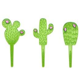 Prikkers cactus - 3 stuks