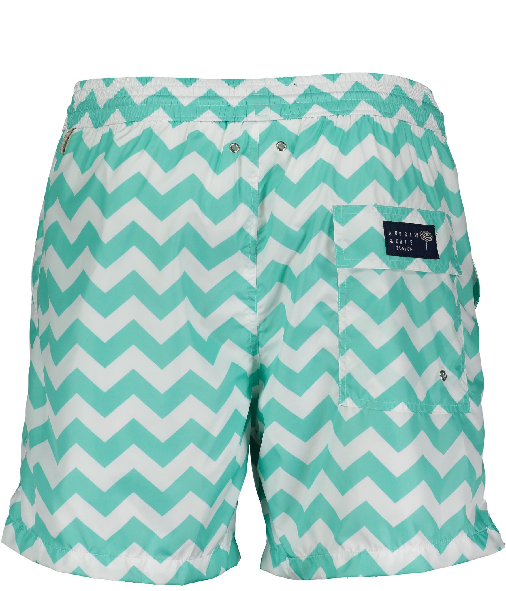 Men's Swim Shorts Wave Mint-3