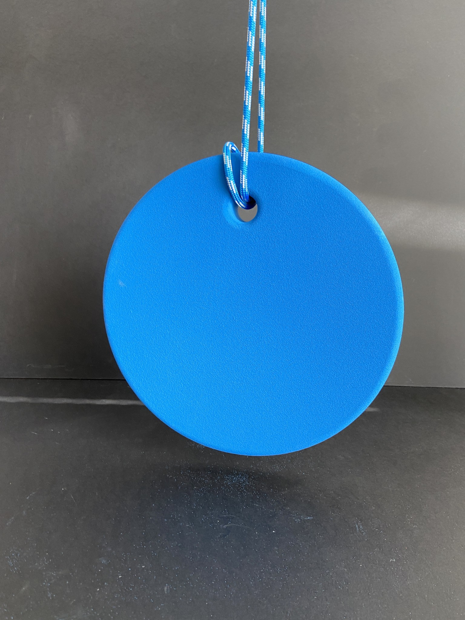 HANGING DISK ECCENTRIC