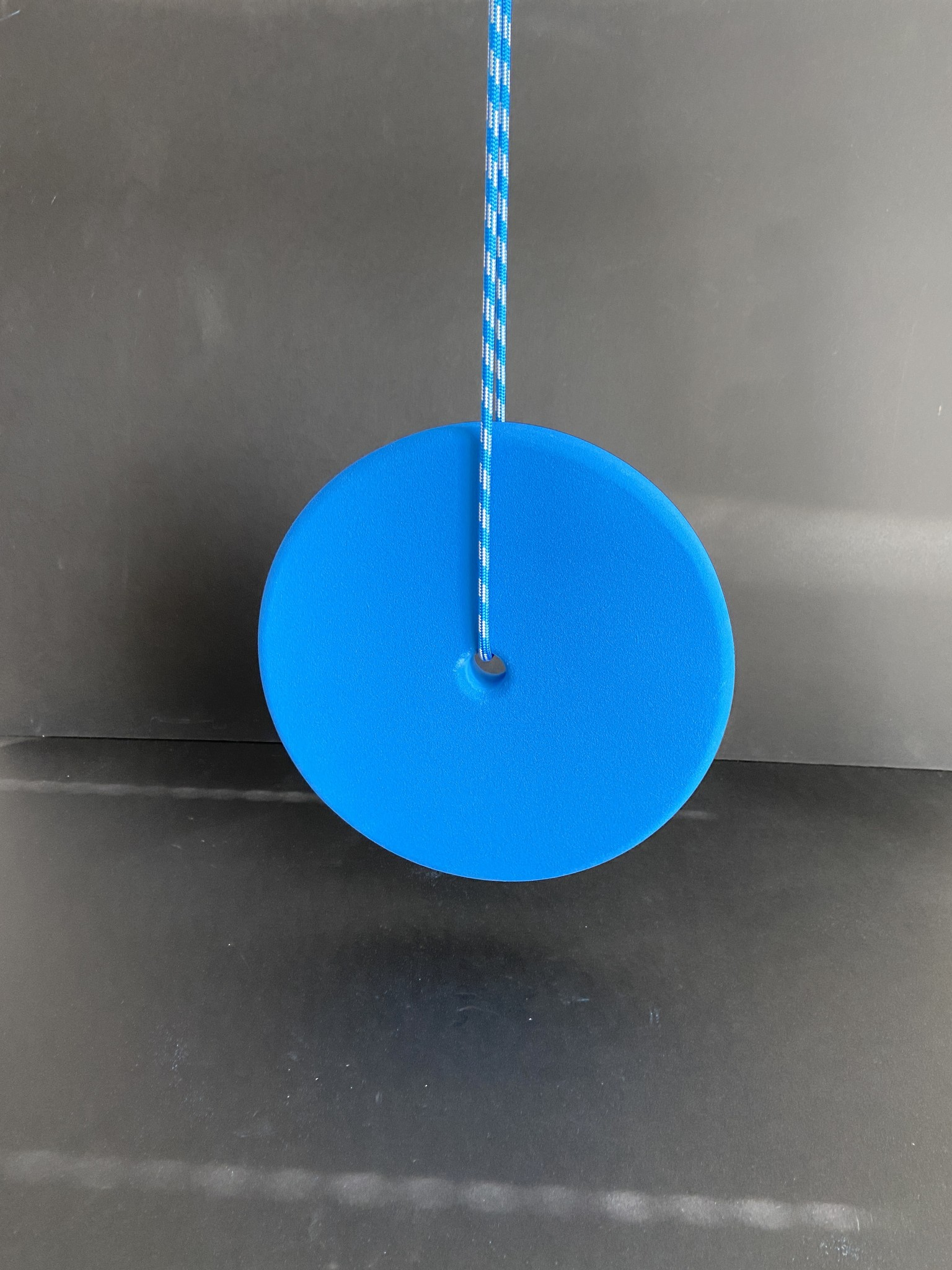 HANGING DISK CENTRIC