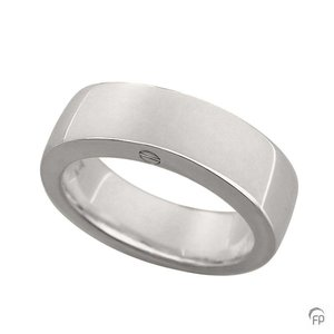R 033.6 Asche Schmuckstück Ring glänzend