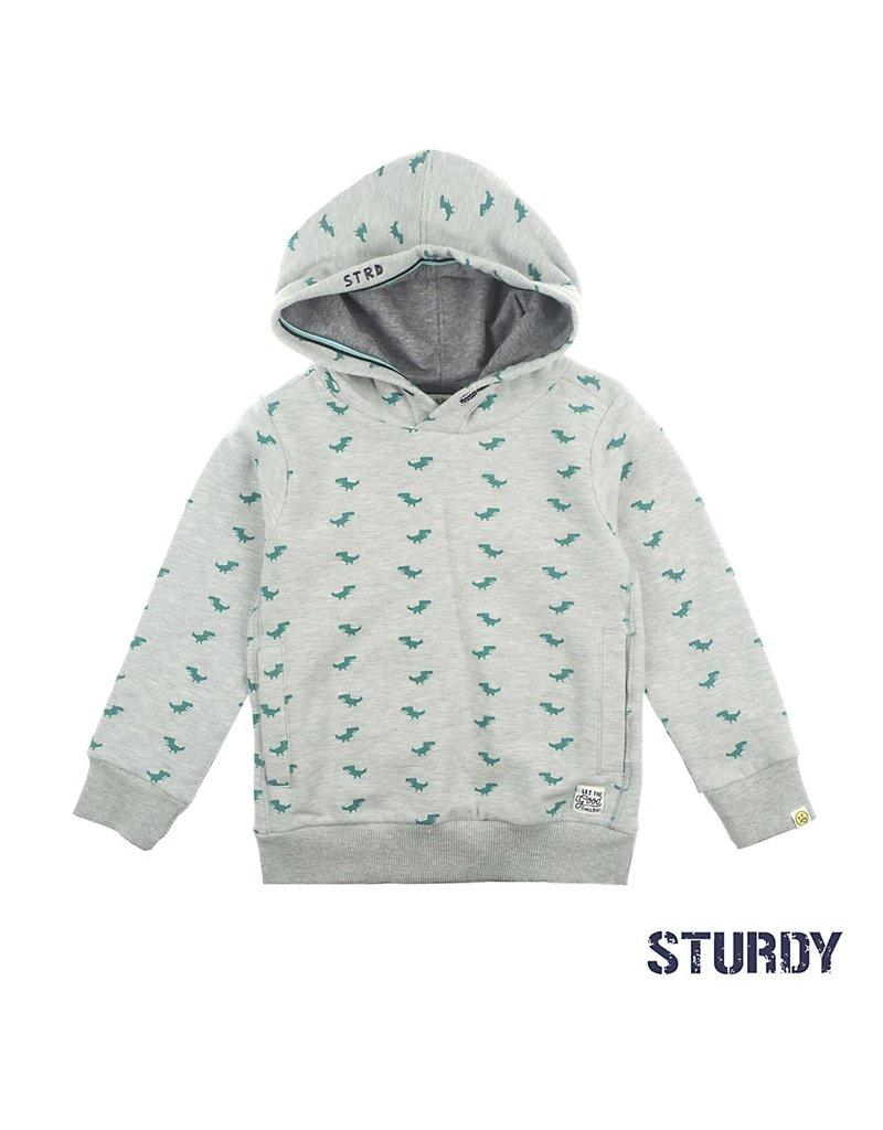 Sturdy Hoody - Concrete Jungle