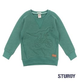 Sturdy Sweater Dino - Concrete Jungle