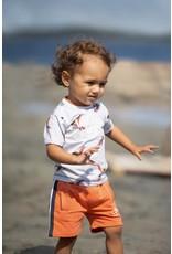 Feetje T-shirt Little Captain - Treasure Hunter