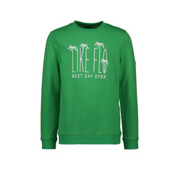 Like Flo Flo boys sweater green
