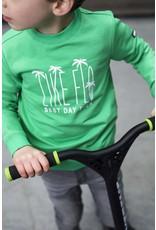 Like Flo Flo boys sweater green