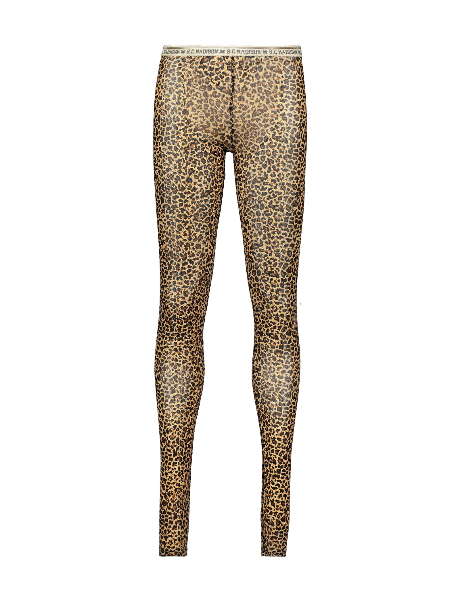 Street Called Madison Luna mesh legging ROAR