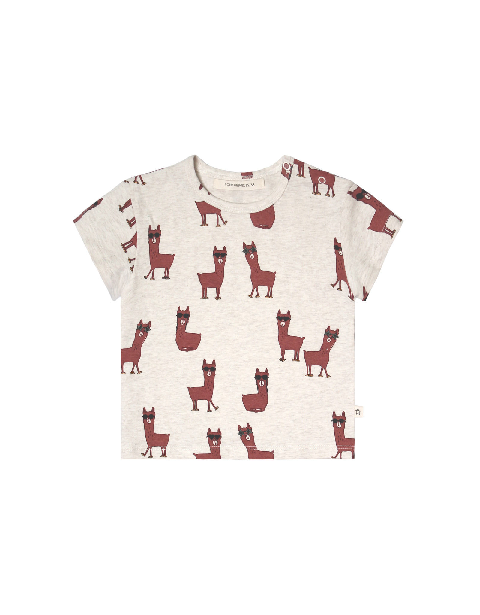 Your Wishes Laidback Lama | Loose Tee
