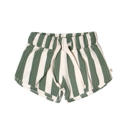 Your Wishes Bold Stripes   Shorts
